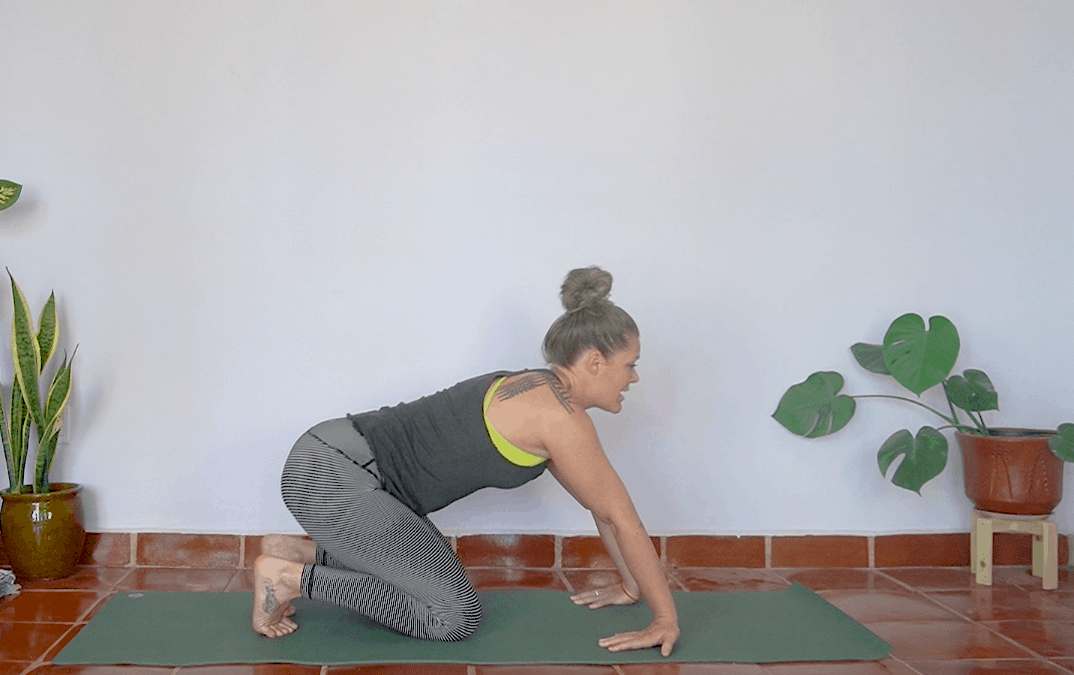 Wrist Mobility (AND Stability!) – 10 minutes