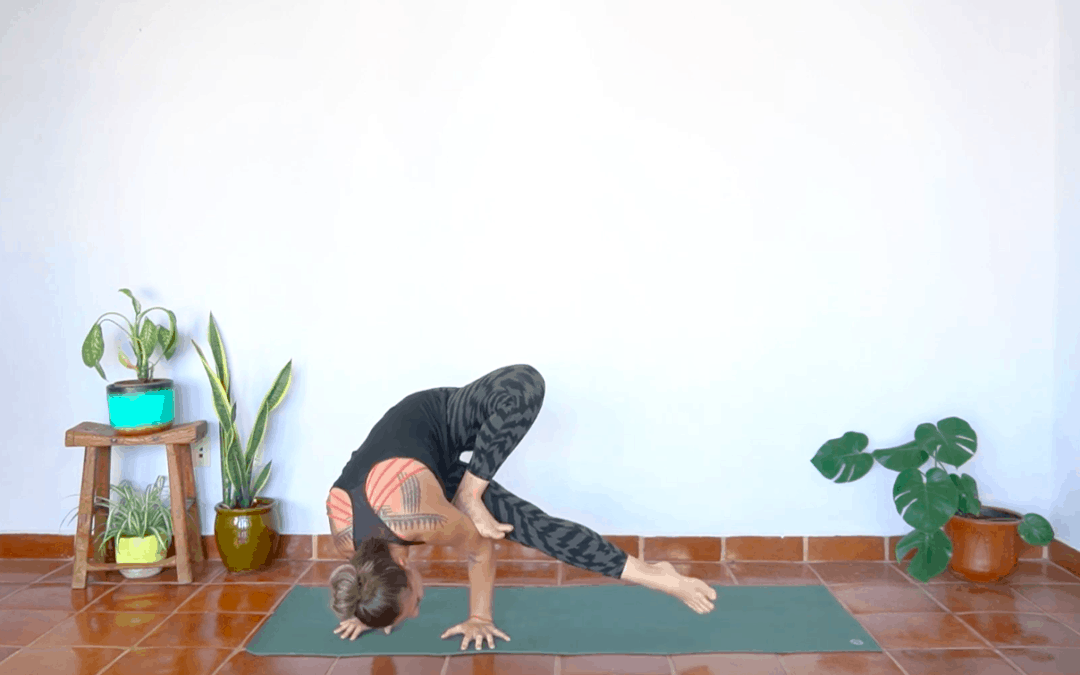 Holy Hips & Twists for Grasshopper – 60 Minutes