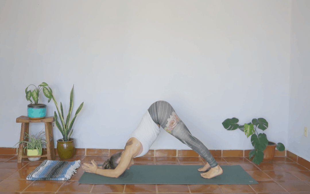 Unlock Inversions with Dolphin Pose – 60 Minutes