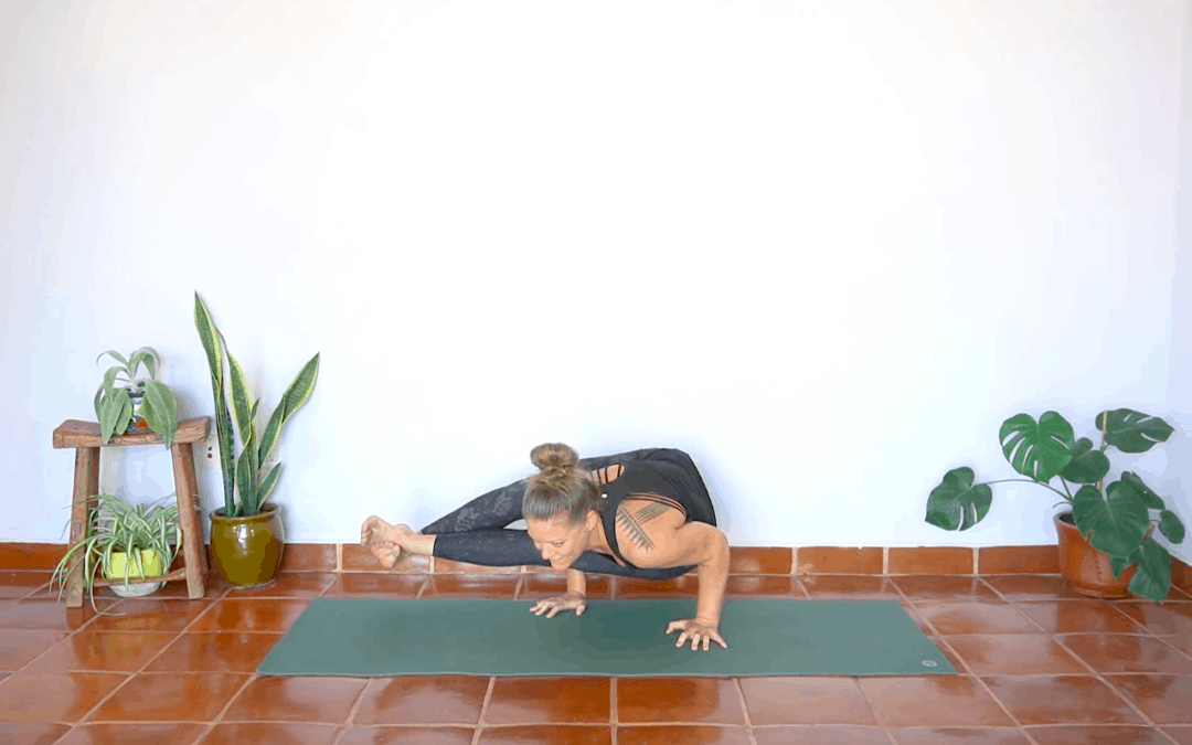 8 Angle Pose Flow – 60 Minutes