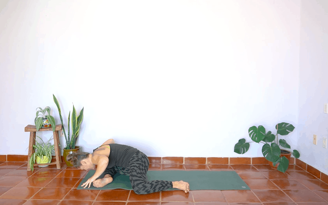 Hip Mobility (AROM + PROM) – 30 Minutes